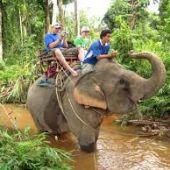 Отдых на севере Таиланда. Достопримечательности Бангкока.