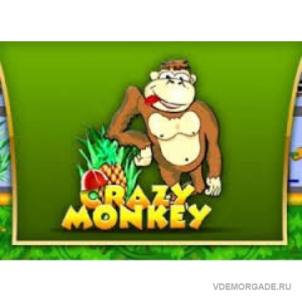 игровые автоматы играть онлайн crazy monkey