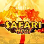 Чем так уникален игровой автомат Safari Heat