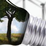 Экологический консалтинг поможет сберечь окружающую среду