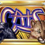 Игровой автомат «Cats», с двойным изображением на символах