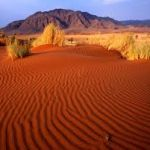 Красные пески пустыни Кызылкум