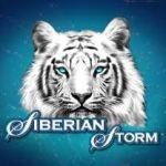 Настоящий шторм в игровом клубе Вулкан